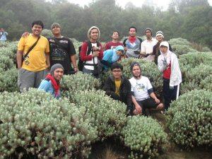 Kelompok 1 @ Tegal Alun